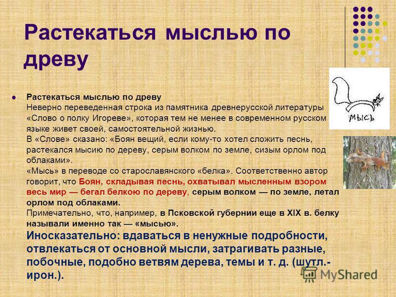 Растекаться мыслью по древу Растекаться мыслью по древу Неверно переведенная строка из памятника древнерусской литературы «Слово о полку Игореве», которая тем не менее в современном русском языке живет своей, самостоятельной жизнью. В «Слове» сказано