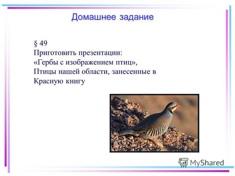 Домашнее задание § 49 Приготовить презентации: «Гербы с изображением птиц», Птицы нашей области, занесенные в Красную книгу