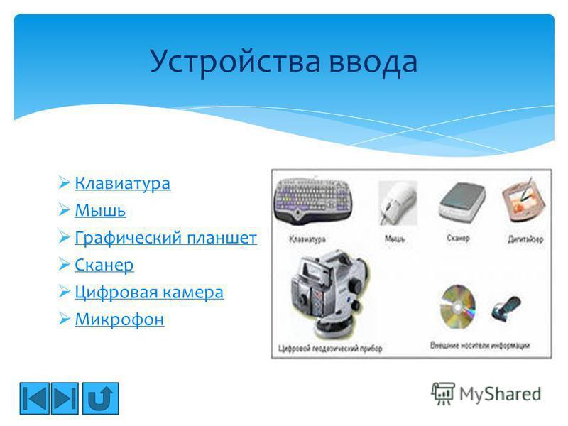 Клавиатура Мышь Графический планшет Сканер Цифровая камера Микрофон Устройства ввода