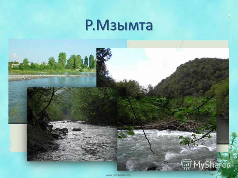 Р.Мзымта