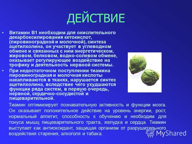 ДЕЙСТВИЕ Витамин B1 необходим для окислительного декарбоксилирования кетокислот, (пировиноградной и молочной), синтеза ацетилхолина, он участвует в углеводном обмене и связанных с ним энергетическом, жировом, белковом, водно-солевом обмене, оказывает