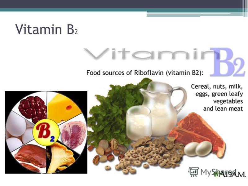 Vitamin B 2