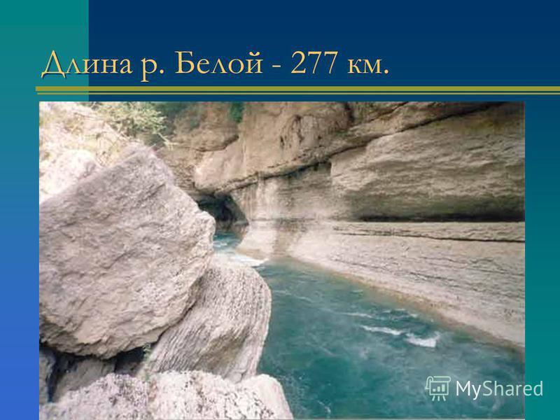 Длина р. Белой - 277 км.