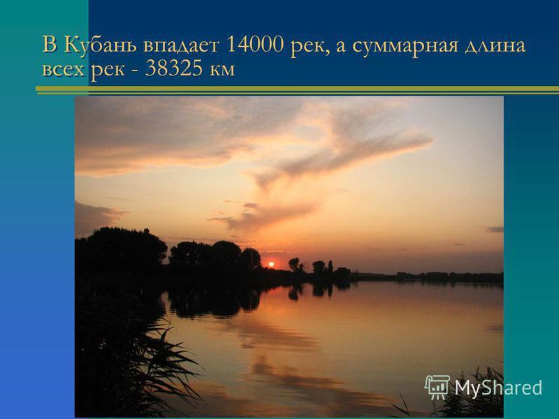 В Кубань впадает 14000 рек, а суммарная длина всех рек - 38325 км