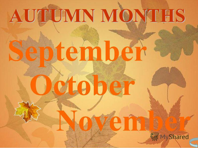 September October November AUTUMN MONTHS