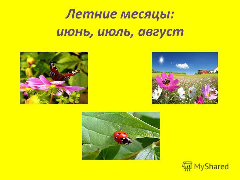 Летние месяцы: июнь, июль, август