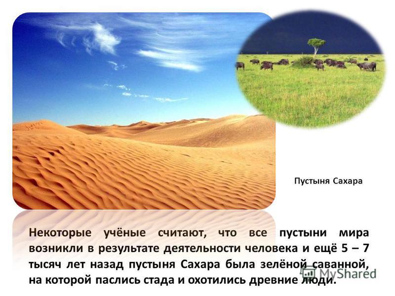 Некоторые учёные считают, что все пустыни мира возникли в результате деятельности человека и ещё 5 – 7 тысяч лет назад пустыня Сахара была зелёной саванной, на которой паслись стада и охотились древние люди. Пустыня Сахара