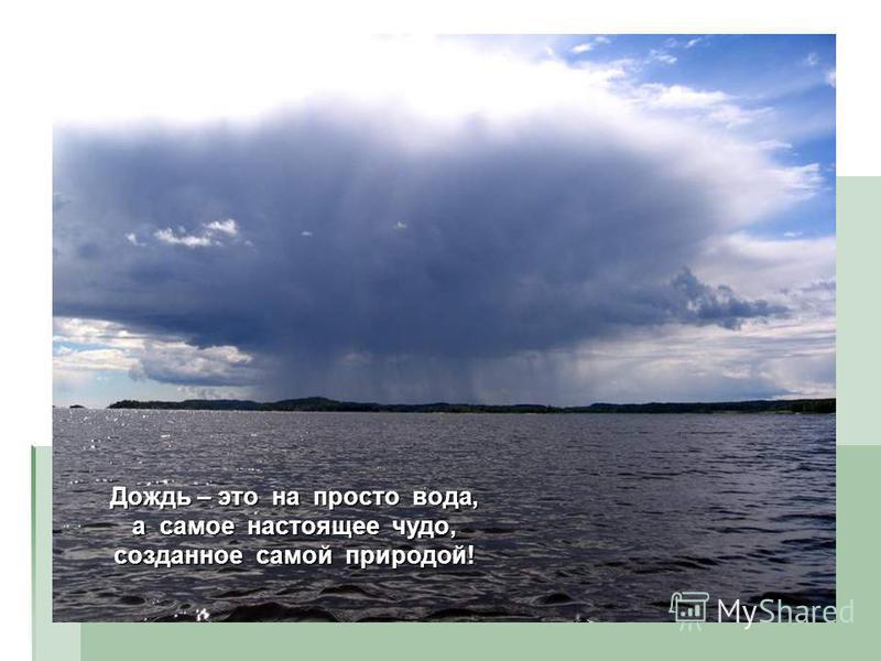 Дождь – это на просто вода, а самое настоящее чудо, созданное самой природой!