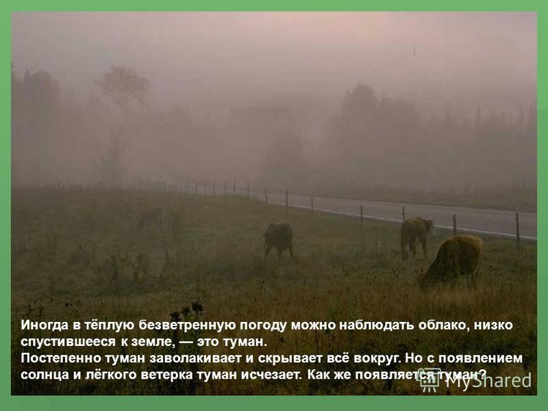 Иногда в тёплую безветренную погоду можно наблюдать облако, низко спустившееся к земле, это туман. Постепенно туман заволакивает и скрывает всё вокруг. Но с появлением солнца и лёгкого ветерка туман исчезает. Как же появляется туман?