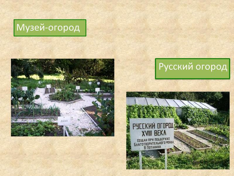 Музей-огород Русский огород