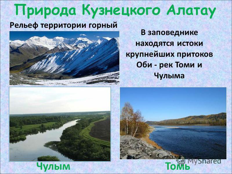 Природа Кузнецкого Алатау Рельеф территории горный В заповеднике находятся истоки крупнейших притоков Оби - рек Томи и Чулыма Чулым Томь