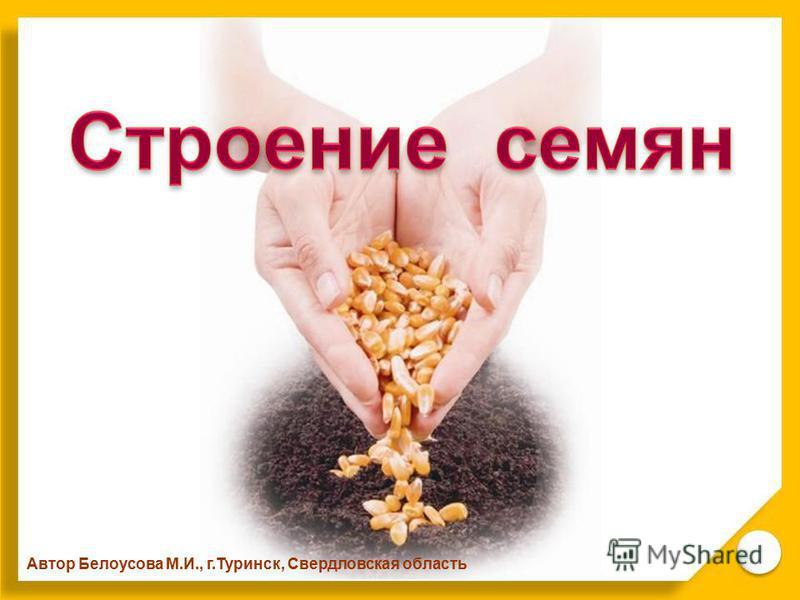 Автор Белоусова М.И., г.Туринск, Свердловская область