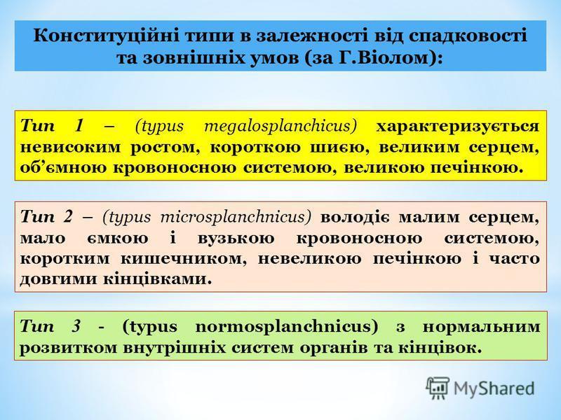 Конституційні типи в залежності від спадковості та зовнішніх умов (за Г.Віолом): Тип 1 – (typus megalosplanchicus) характеризується невисоким ростом, короткою шиєю, великим серцем, обємною кровоносною системою, великою печінкою. Тип 2 – (typus micros