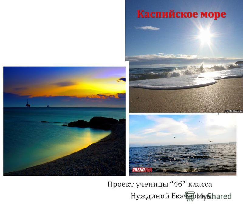 Каспийское море Проект ученицы 4 б класса Нуждиной Екатерины