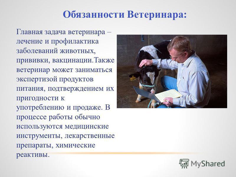 Обязанности Ветеринара: Главная задача ветеринара – лечение и профилактика заболеваний животных, прививки, вакцинации.Также ветеринар может заниматься экспертизой продуктов питания, подтверждением их пригодности к употреблению и продаже. В процессе р
