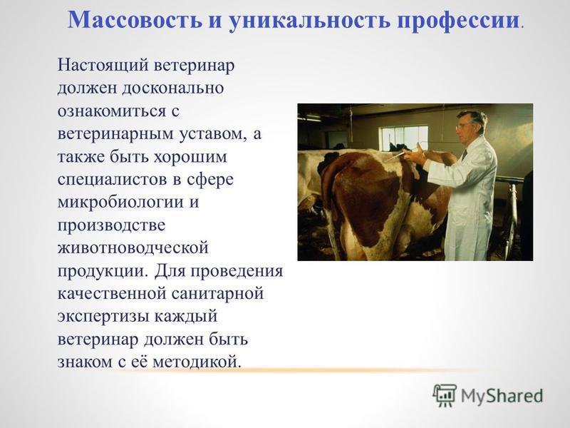Настоящий ветеринар должен досконально ознакомиться с ветеринарным уставом, а также быть хорошим специалистов в сфере микробиологии и производстве животноводческой продукции. Для проведения качественной санитарной экспертизы каждый ветеринар должен б