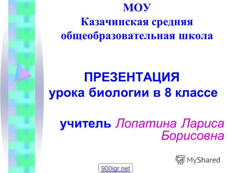МОУ Казачинская средняя общеобразовательная школа ПРЕЗЕНТАЦИЯ урока биологии в 8 классе учитель Лопатина Лариса Борисовна 900igr.net