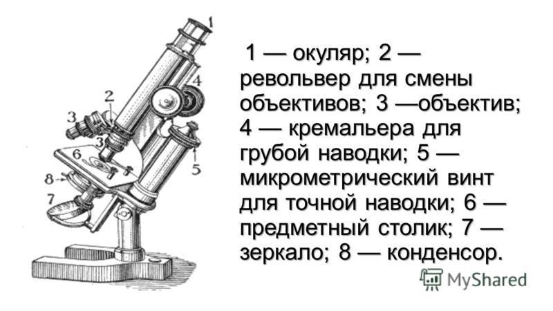 1 окуляр; 2 револьвер для смены объективов; 3 объектив; 4 кремальера для грубой наводки; 5 микрометрический винт для точной наводки; 6 предметный столик; 7 зеркало; 8 конденсор. 1 окуляр; 2 револьвер для смены объективов; 3 объектив; 4 кремальера для