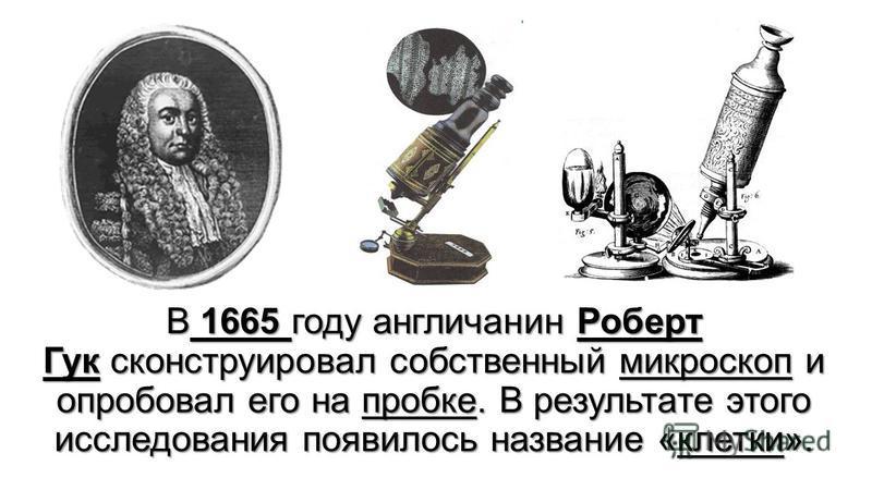 В 1665 году англичанин Роберт Гук сконструировал собственный микроскопп и опробовал его на пробке. В результате этого исследования появилось название «клетки».