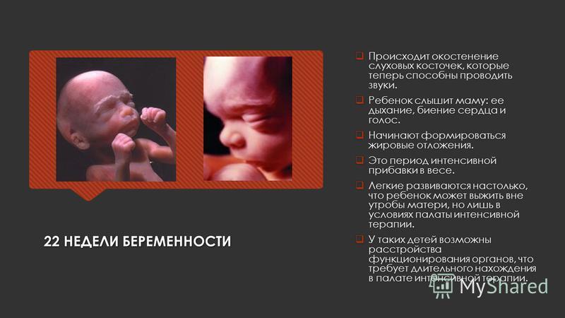 22 НЕДЕЛИ БЕРЕМЕННОСТИ Происходит окостенение слуховых косточек, которые теперь способны проводить звуки. Ребенок слышит маму: ее дыхание, биение сердца и голос. Начинают формироваться жировые отложения. Это период интенсивной прибавки в весе. Легкие