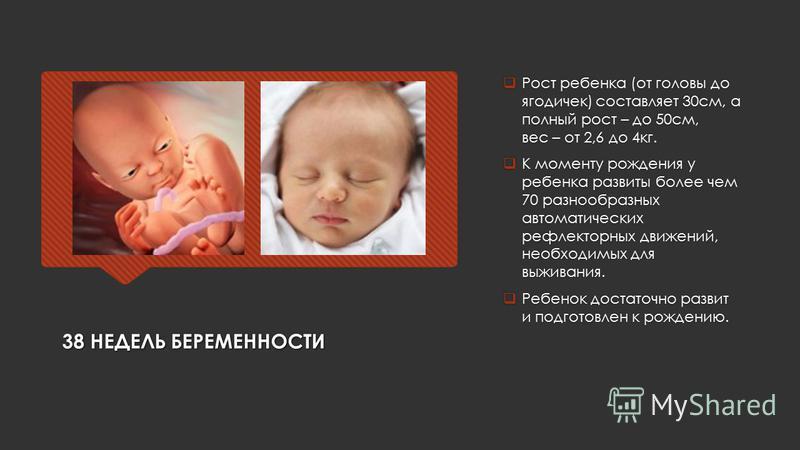 38 НЕДЕЛЬ БЕРЕМЕННОСТИ Рост ребенка (от головы до ягодичек) составляет 30 см, а полный рост – до 50 см, вес – от 2,6 до 4 кг. К моменту рождения у ребенка развиты более чем 70 разнообразных автоматических рефлекторных движений, необходимых для выжива