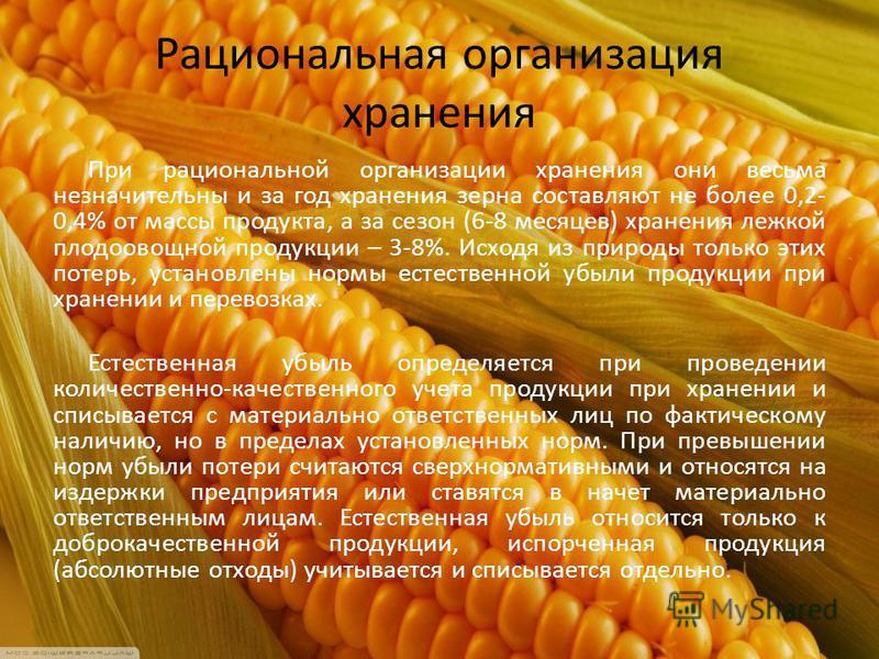 Рациональная организация хранения При рациональной организации хранения они весьма незначительны и за год хранения зерна составляют не более 0,2- 0,4% от массы продукта, а за сезон (6-8 месяцев) хранения лежкой плодоовощной продукции – 3-8%. Исходя и