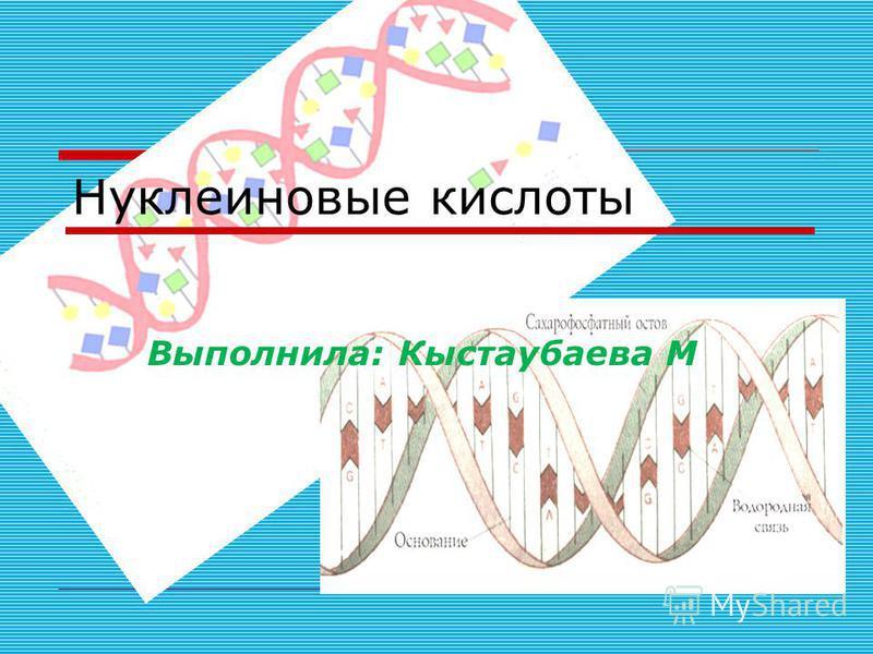 Нуклеиновые кислоты Выполнила: Кыстаубаева М