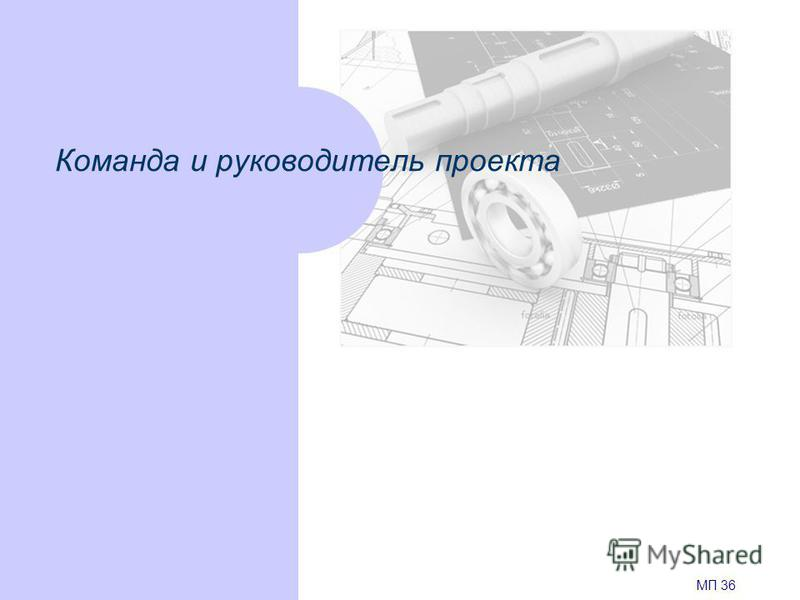 Команда и руководитель проекта МП 36