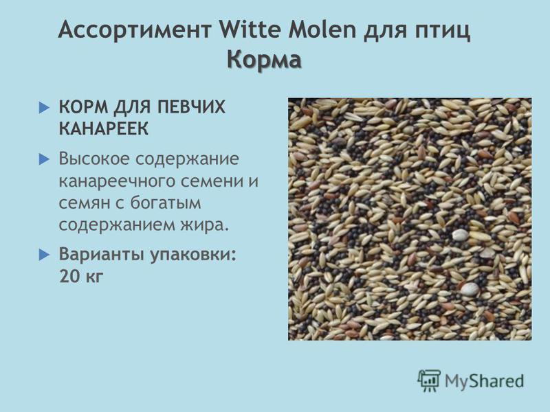 КОРМ ДЛЯ ПЕВЧИХ КАНАРЕЕК Высокое содержание канареечного семени и семян с богатым содержанием жира. Варианты упаковки: 20 кг Корма Ассортимент Witte Molen для птиц Корма