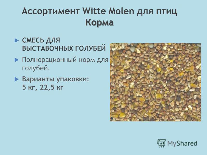 СМЕСЬ ДЛЯ ВЫСТАВОЧНЫХ ГОЛУБЕЙ Полнорационный корм для голубей. Варианты упаковки: 5 кг, 22,5 кг Корма Ассортимент Witte Molen для птиц Корма