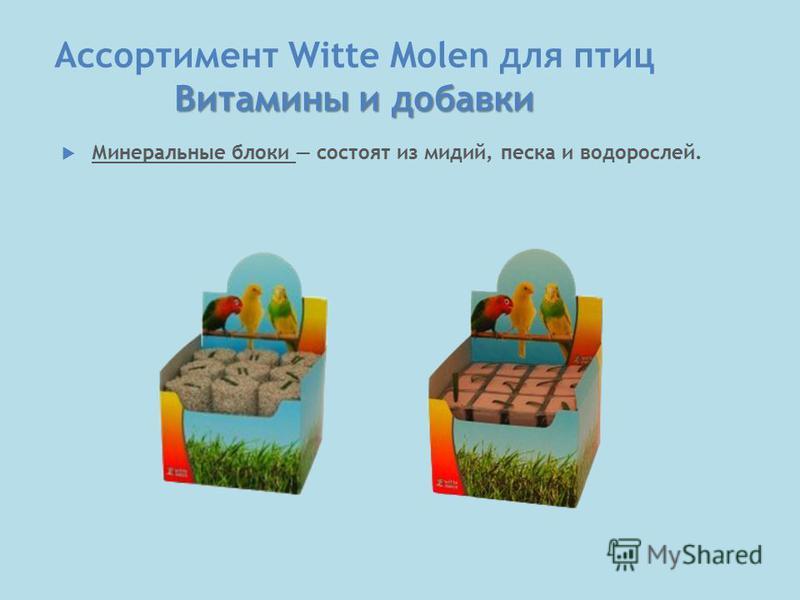 Витамины и добавки Ассортимент Witte Molen для птиц Витамины и добавки Минеральные блоки состоят из мидий, песка и водорослей.