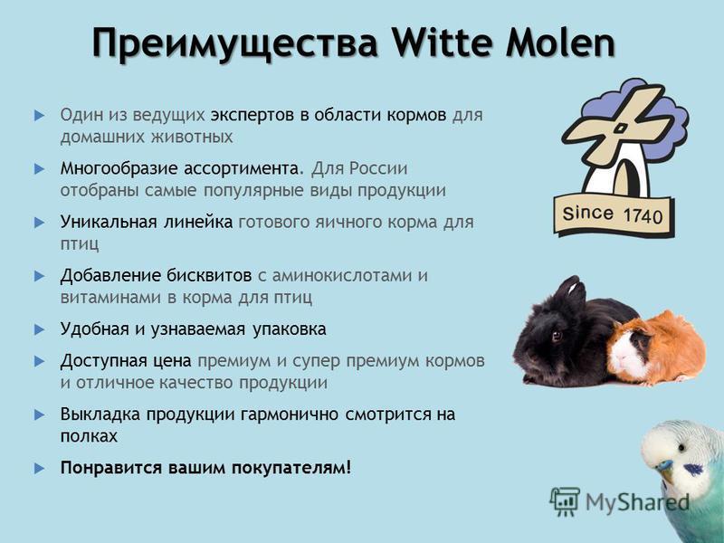 Преимущества Witte Molen Один из ведущих экспертов в области кормов для домашних животных Многообразие ассортимента. Для России отобраны самые популярные виды продукции Уникальная линейка готового яичного корма для птиц Добавление бисквитов с аминоки