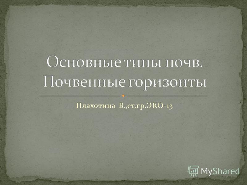Плахотина В.,ст.гр.ЭКО-13