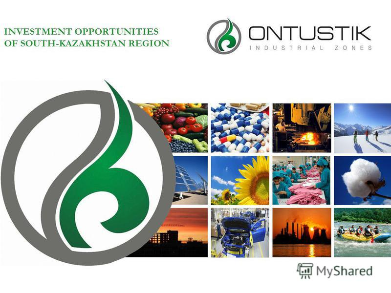 INVESTMENT OPPORTUNITIES OF SOUTH-KAZAKHSTAN REGION