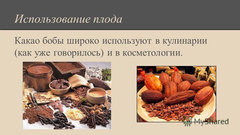 Использование плода Какао бобы широко используют в кулинарии (как уже говорилось) и в косметологии.