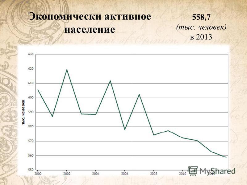 Экономически активное население 558,7 (тыс. человек) в 2013