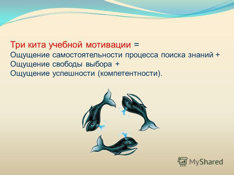 Три кита учебной мотивации = Ощущение самостоятельности процесса поиска знаний + Ощущение свободы выбора + Ощущение успешности (компетентности).