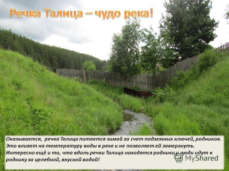 Один из родников по ул. Талицкая пробился в огород. Хозяева обустроили его, теперь он радует их.