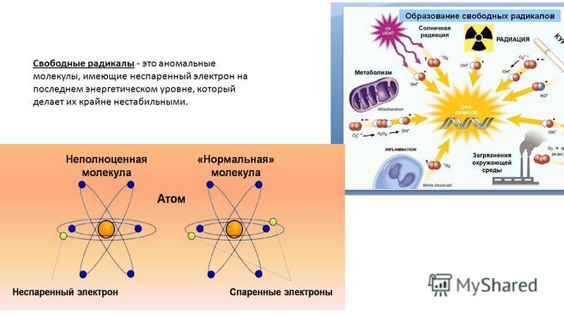 Свободные радикалы - это аномальные молекулы, имеющие неспаренный электрон на последнем энергетическом уровне, который делает их крайне нестабильными.