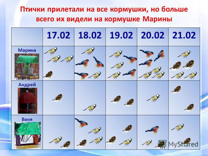 Птички прилетали на все кормушки, но больше всего их видели на кормушке Марины 17.0218.0219.0220.0221.02 Марина Андрей Ваня