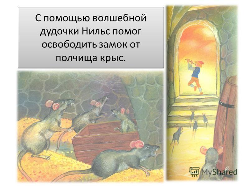 С помощью волшебной дудочки Нильс помог освободить замок от полчища крыс.