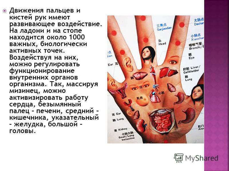 Движения пальцев и кистей рук имеют развивающее воздействие. На ладони и на стопе находится около 1000 важных, биологически активных точек. Воздействуя на них, можно регулировать функционирование внутренних органов организма. Так, массируя мизинец, м