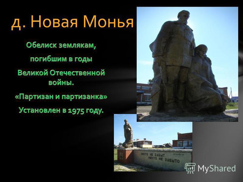 д. Новая Монья
