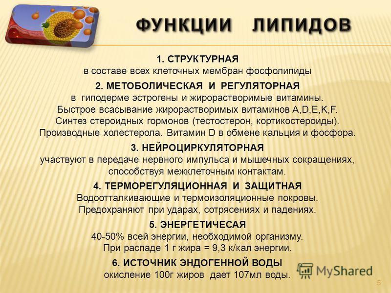 5 1. СТРУКТУРНАЯ в составе всех клеточных мембран фосфолипиды 2. МЕТОБОЛИЧЕСКАЯ И РЕГУЛЯТОРНАЯ в гиподерме эстрогены и жирорастворимые витамины. Быстрое всасывание жирорастворимых витаминов A,D,E,K,F. Синтез стероидных гормонов (тестостерон, кортикос