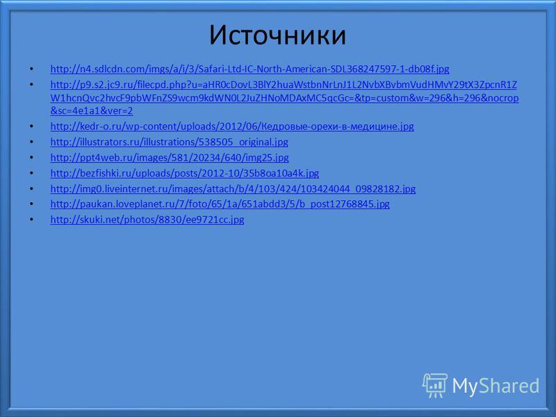Источники http://n4.sdlcdn.com/imgs/a/i/3/Safari-Ltd-IC-North-American-SDL368247597-1-db08f.jpg http://p9.s2.jc9.ru/filecpd.php?u=aHR0cDovL3BlY2huaWstbnNrLnJ1L2NvbXBvbmVudHMvY29tX3ZpcnR1Z W1hcnQvc2hvcF9pbWFnZS9wcm9kdWN0L2JuZHNoMDAxMC5qcGc=&tp=custom&