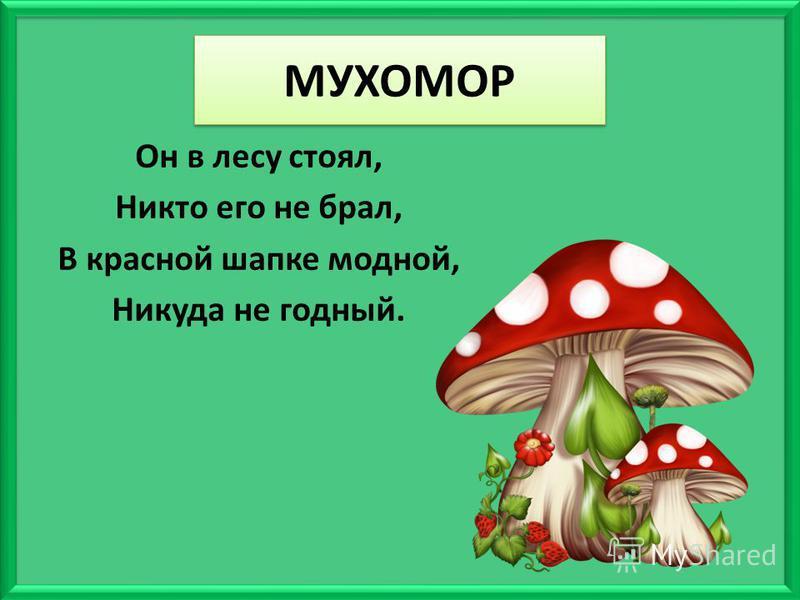 МУХОМОР Он в лесу стоял, Никто его не брал, В красной шапке модной, Никуда не годный.