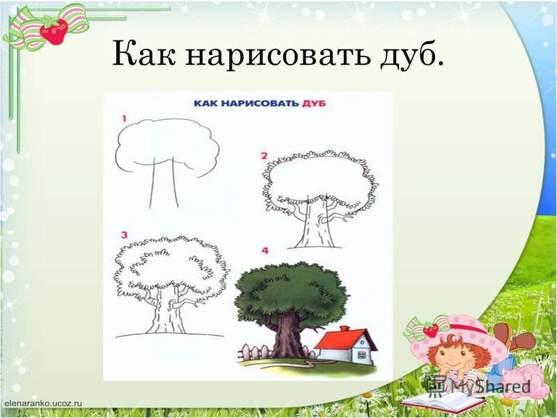 Как нарисовать дуб.