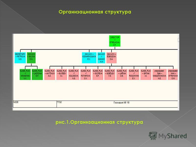 Организационная структура рис.1. Организационная структура