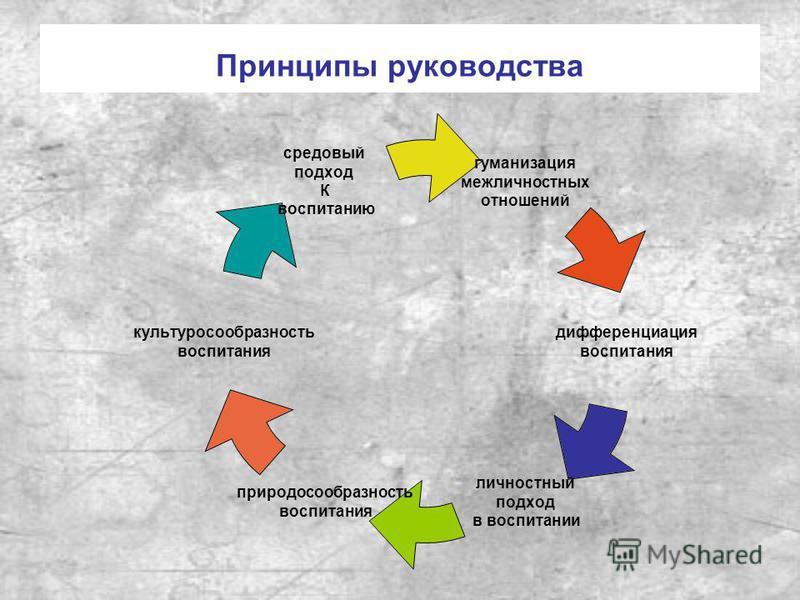 Принципы руководства гуманизация межличностных отношений дифференциация воспитания личностный подход в воспитании природосообразность воспитания культуросообразность воспитания средовый подход К воспитанию