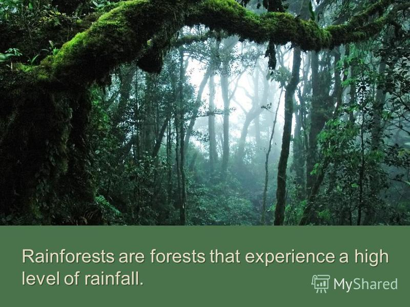 Rainforests are forests that experience a high level of rainfall.